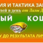 Стратегия и тактика заработка Лизы Дорошиной «Желтый кошелек» скачать бесплатно